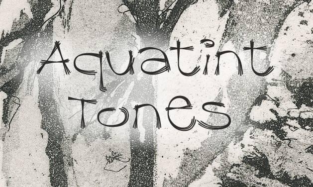 Aquatint Tones image