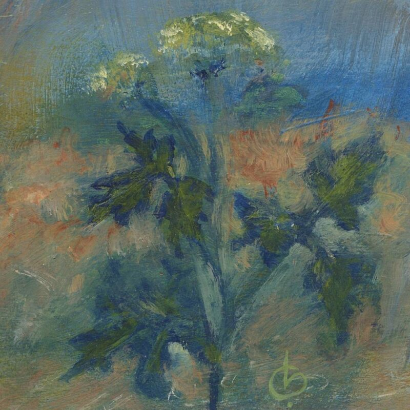 hogweed painting