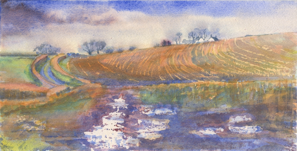 Track by Ploughed Field