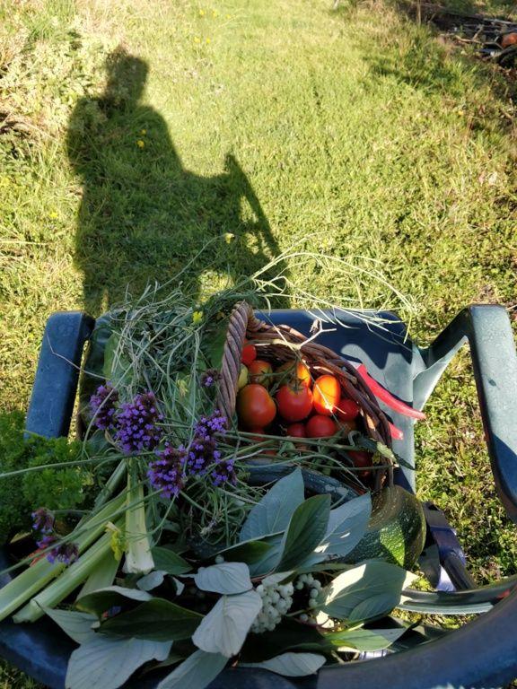 Garden Goodies